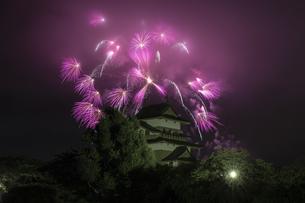 高島城 日本 長野県 諏訪市の写真素材 [FYI04286944]
