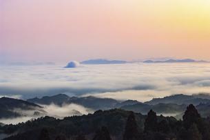 フォレストパーク神野山 日本 奈良県 山添村の写真素材 [FYI04286999]