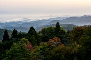 フォレストパーク神野山 日本 奈良県 山添村の写真素材 [FYI04287000]