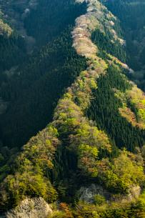 ナメゴ谷 国道309 64カーブポイント 日本 奈良県 上北山村の写真素材 [FYI04287005]