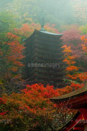 談山神社十三重塔 日本 奈良県 桜井市の写真素材 [FYI04287007]