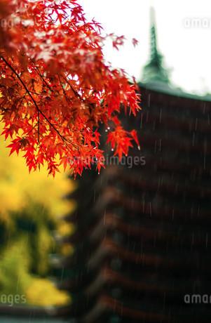 談山神社十三重塔 日本 奈良県 桜井市の写真素材 [FYI04287009]