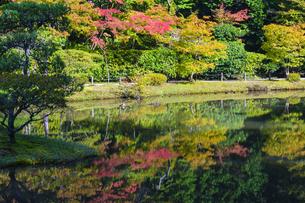忍辱山町 圓成寺 日本 奈良県 奈良市の写真素材 [FYI04287039]