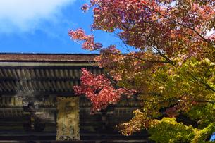 忍辱山町 圓成寺 日本 奈良県 奈良市の写真素材 [FYI04287040]