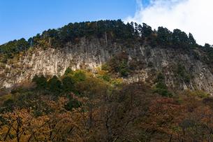屏風岩公苑 日本 奈良県 曽爾村の写真素材 [FYI04287043]