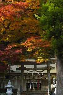 田口水分神社 日本 奈良県 宇陀市の写真素材 [FYI04287049]