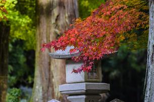 田口水分神社 日本 奈良県 宇陀市の写真素材 [FYI04287053]