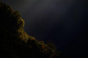 ナメゴ谷 日本 奈良県 上北山村の写真素材 [FYI04287067]