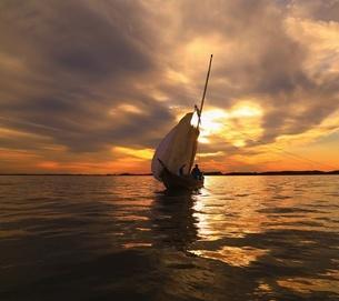 霞ヶ浦 帆引き船漁の写真素材 [FYI04287074]