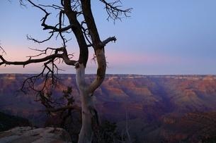 国立公園 アメリカの写真素材 [FYI04287078]