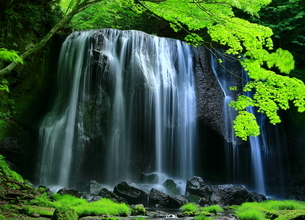 達沢不動滝 日本 福島県 猪苗代町の写真素材 [FYI04287111]