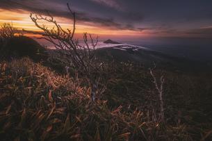 韓国岳山頂 日本 宮崎県 小林市の写真素材 [FYI04287230]