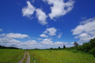 栗駒山 日本 秋田県 東成瀬村の写真素材 [FYI04287239]