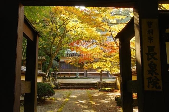 長泉院 日本 神奈川県 南足柄市の写真素材 [FYI04287243]