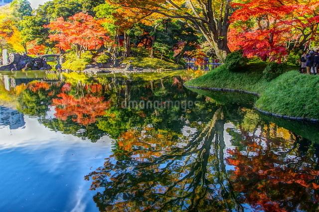 小石川後楽園 日本 東京都 文京区の写真素材 [FYI04287248]