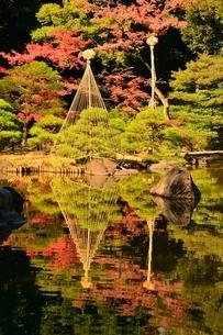 旧古河庭園 日本 東京都 北区の写真素材 [FYI04287249]