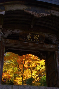 大雄山最乗寺 日本 神奈川県 南足柄市の写真素材 [FYI04287251]