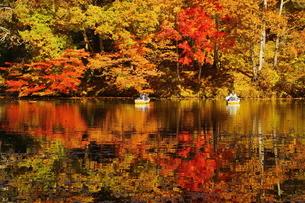 震生湖 日本 神奈川県 秦野市の写真素材 [FYI04287255]