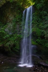 夕日の滝 日本 神奈川県 南足柄市の写真素材 [FYI04287277]