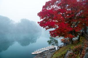 毘沙門沼(五色沼湖沼群) 日本 福島県 北塩原村の写真素材 [FYI04287290]