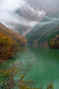 徳山湖 日本 岐阜県 揖斐郡の写真素材 [FYI04287299]