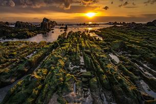屏風岩 根本海岸 白浜 日本 千葉県 南房総市の写真素材 [FYI04287330]