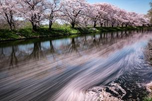 福岡堰 日本 茨城県 つくばみらい市の写真素材 [FYI04287377]