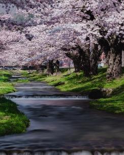 観音寺川 日本 福島県 猪苗代町の写真素材 [FYI04287383]