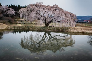 棚倉町 日本 福島県 棚倉町の写真素材 [FYI04287387]