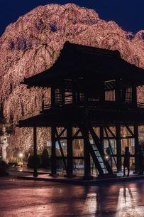 阿弥陀寺 日本 茨城県 那珂市の写真素材 [FYI04287389]