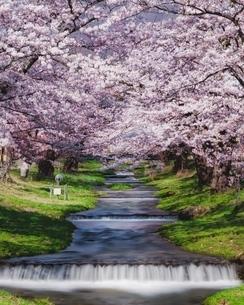 観音寺川 日本 福島県 猪苗代町の写真素材 [FYI04287392]