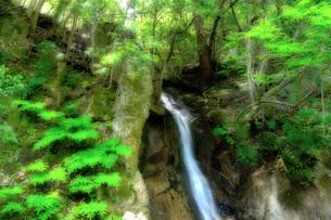 三瀧寺・幽明の滝 日本 広島県 広島市の写真素材 [FYI04287428]