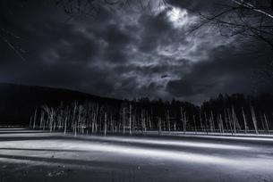 青い池 日本 北海道 上川郡の写真素材 [FYI04287450]
