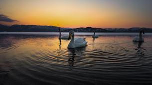 屈斜路湖砂湯 日本 北海道 弟子屈町の写真素材 [FYI04287453]