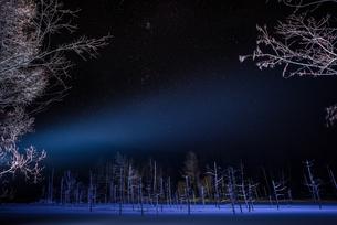 青い池 日本 北海道 美瑛町の写真素材 [FYI04287467]