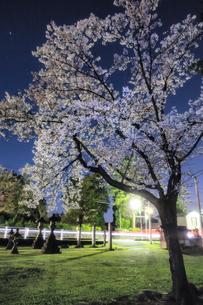 観音堂 日本 新潟県 上越市の写真素材 [FYI04287470]