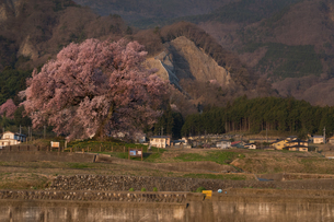 農村 山 日本の写真素材 [FYI04287488]