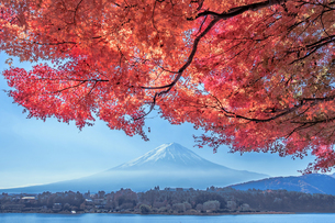 河口湖からの眺めの写真素材 [FYI04287499]