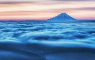 高ボッチから見た夜明けの雲海と富士山の写真素材 [FYI04287501]