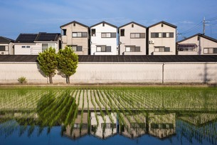 日本 大阪府 松原市の写真素材 [FYI04287521]