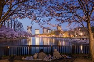 大阪城公園 日本 大阪府 大阪市の写真素材 [FYI04287530]