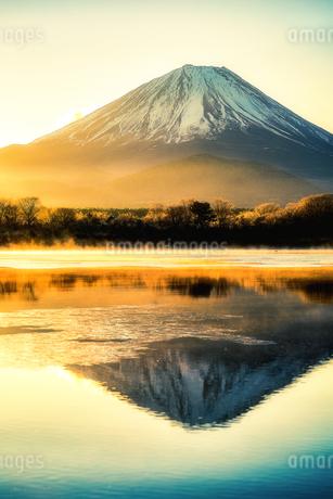 精進湖と富士山の写真素材 [FYI04287536]