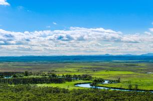 釧路湿原細岡展望台 日本 北海道 釧路町の写真素材 [FYI04287557]