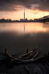 東京スカイツリーと杭のコラボスポット 日本 東京都 葛飾区の写真素材 [FYI04287571]