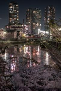 佃公園 日本 東京都 中央区の写真素材 [FYI04287584]