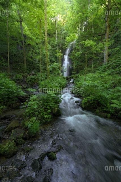 雲井の滝 日本 青森県 十和田市の写真素材 [FYI04287613]
