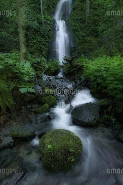 奥入瀬渓流 日本 青森県 十和田市の写真素材 [FYI04287614]