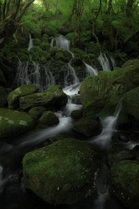 元滝伏流水 日本 秋田県 にかほ市の写真素材 [FYI04287616]