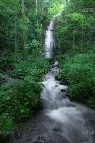 雲井の滝 日本 青森県 十和田市の写真素材 [FYI04287620]