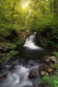 宇津江四十八滝公園 日本 岐阜県 高山市の写真素材 [FYI04287629]